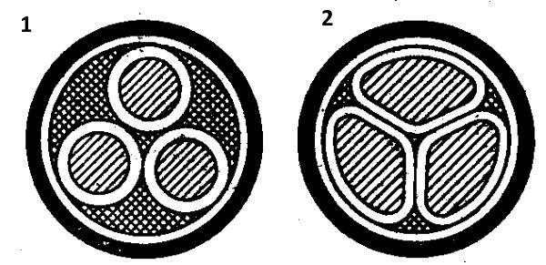 Круглые (1) и секторные (2) жилы