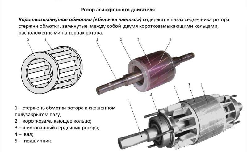 Ротор асинхронного двигателя с КЗ обмотками
