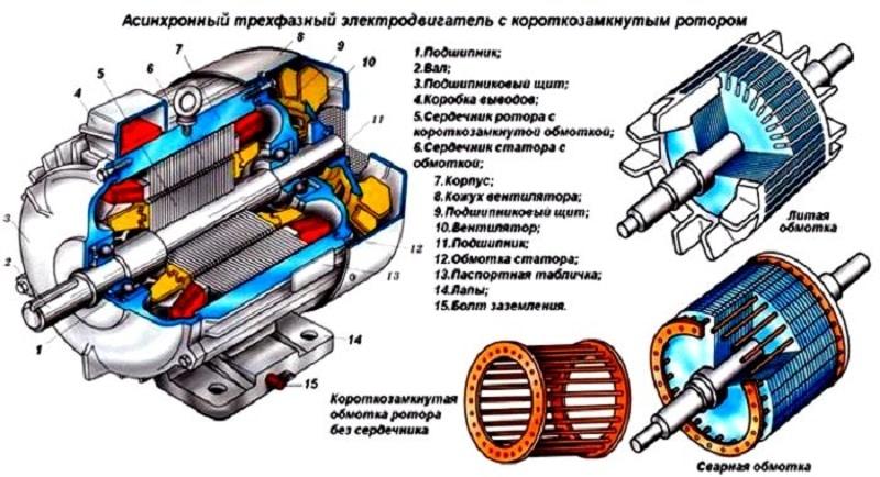 Строение асинхронного двигателя с КЗ Ротором