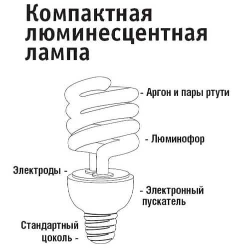 люминесцентная ЭБЛ