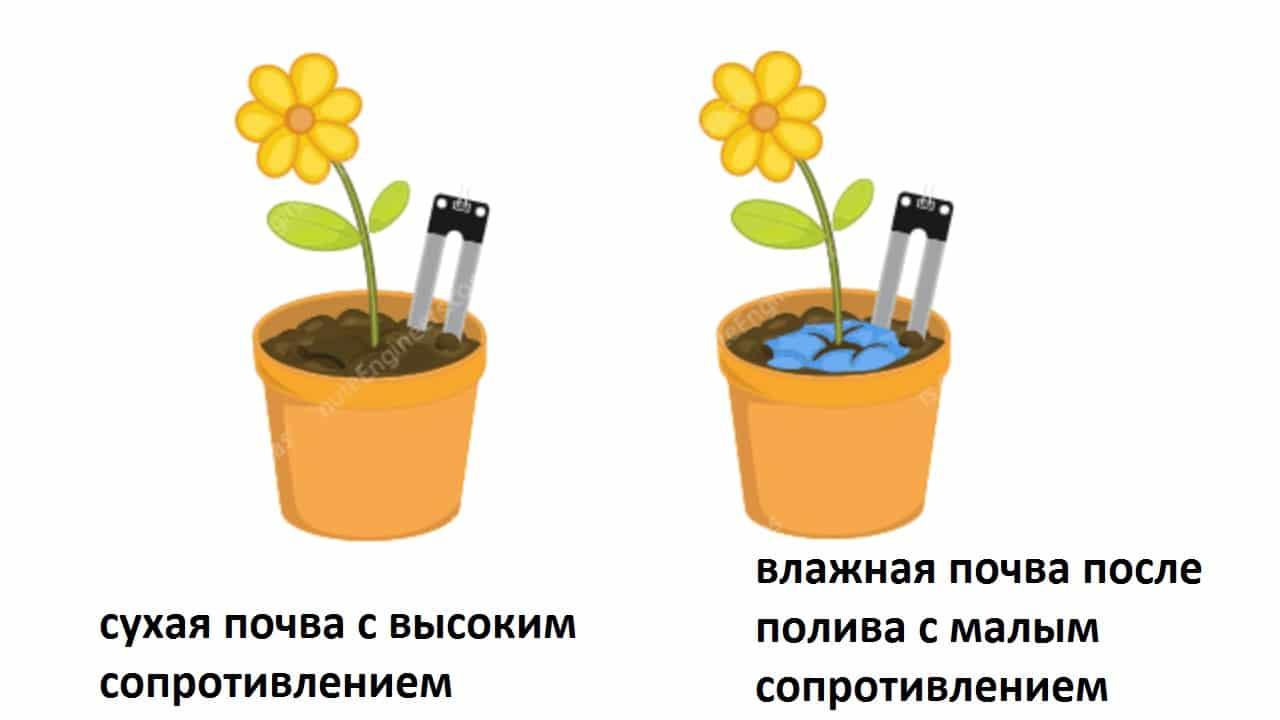 Использование датчика влажности для почвы