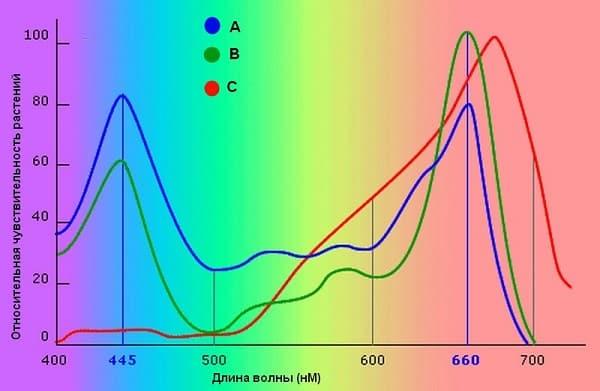 Зависимость чувствительности растений от определенного спектра