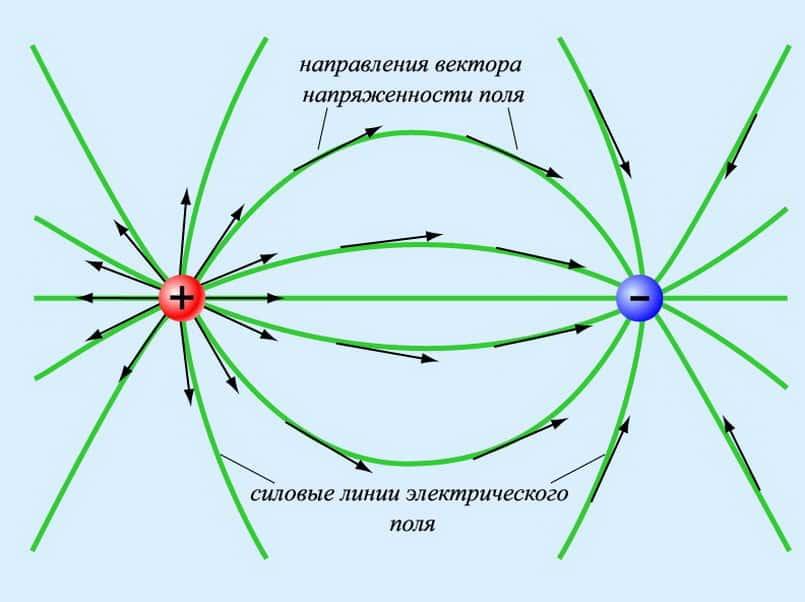 Направление линий напряжённости положительных и отрицательных зарядов