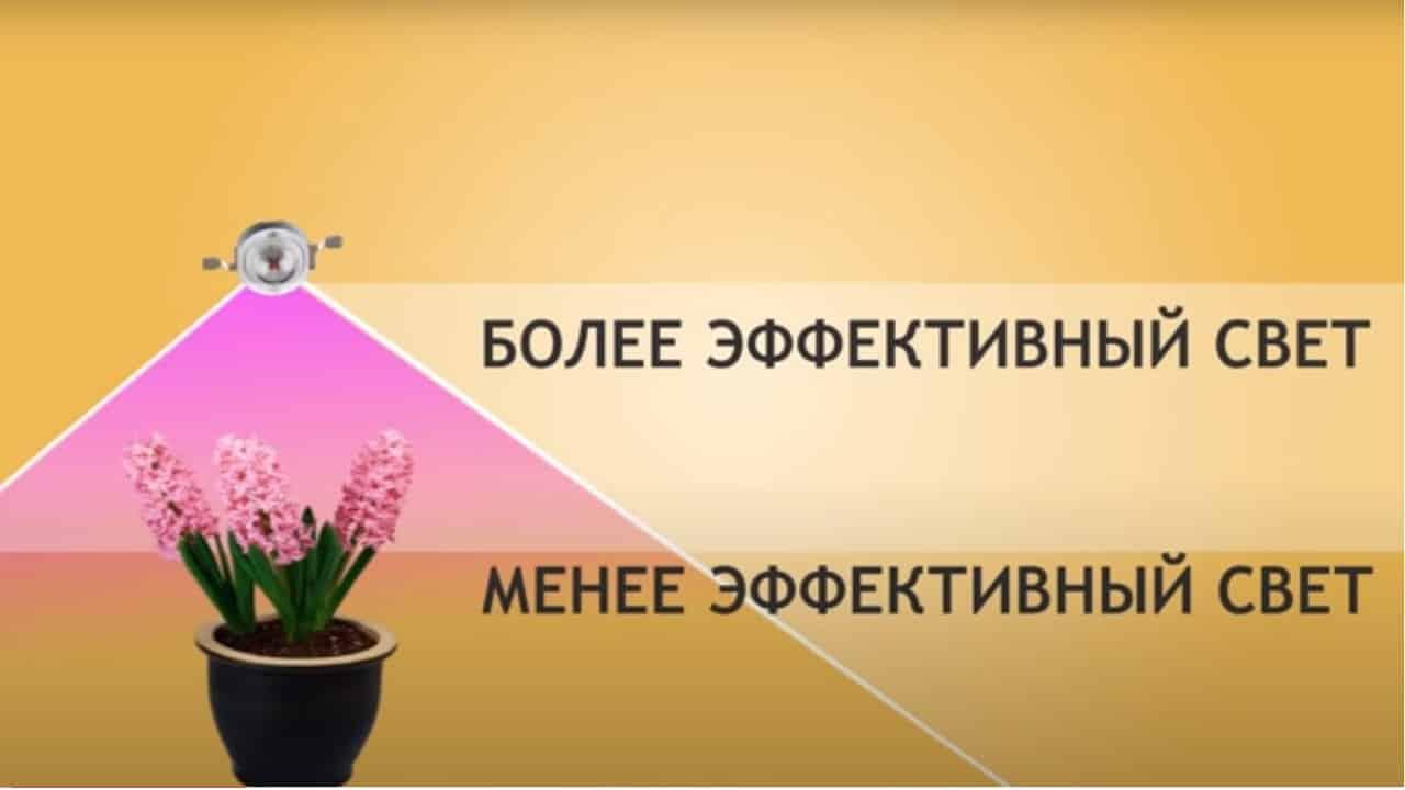 Эффективность света в зависимости от высоты
